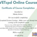 Сертификат VetCPD