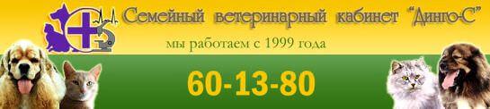 """Ветеринарный кабинет """"Динго-С"""", г. Волгоград"""