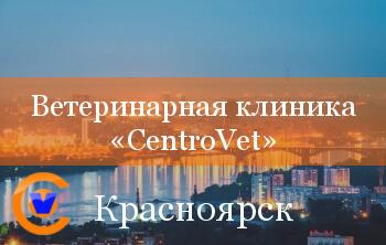 Ветеринарная клиника CentroVet - партнёр CYTOVET в Красноярске
