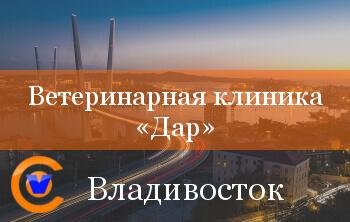 Ветеринарная клиника ДАР - партнёр CYTOVET во Владивостоке